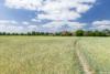 Bauträgerfreies Grundstück in ruhiger und sonniger Wohnlage Berlin-Karows - Die nahegelegenen Felder