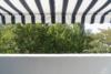 Freie und helle 3-Zimmerwohnung mit sonnigem Balkon - Die Markise