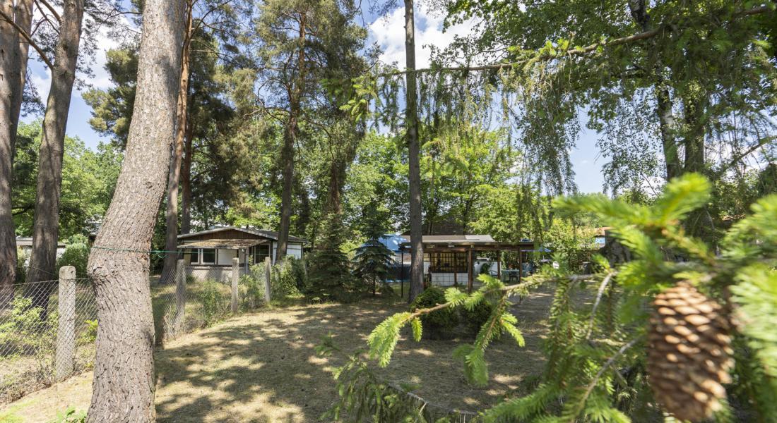 Baugrundstück für z.B. ein Doppelhaus oder 2 Häuser in Blankenfelde-Mahlow 15827 Blankenfelde-Mahlow, Grundstück