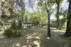 Baugrundstück für z.B. ein Doppelhaus oder 2 Häuser in Blankenfelde-Mahlow - Das rechte Grundstück