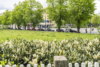 Bezugsfreies Apartment vis-à-vis zum Schloss Charlottenburg - Der Klausener Platz