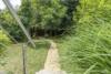 JFK in 5 Min - Großzügiges Haus im exklusiven Zehlendorf-Süd - Der Garten