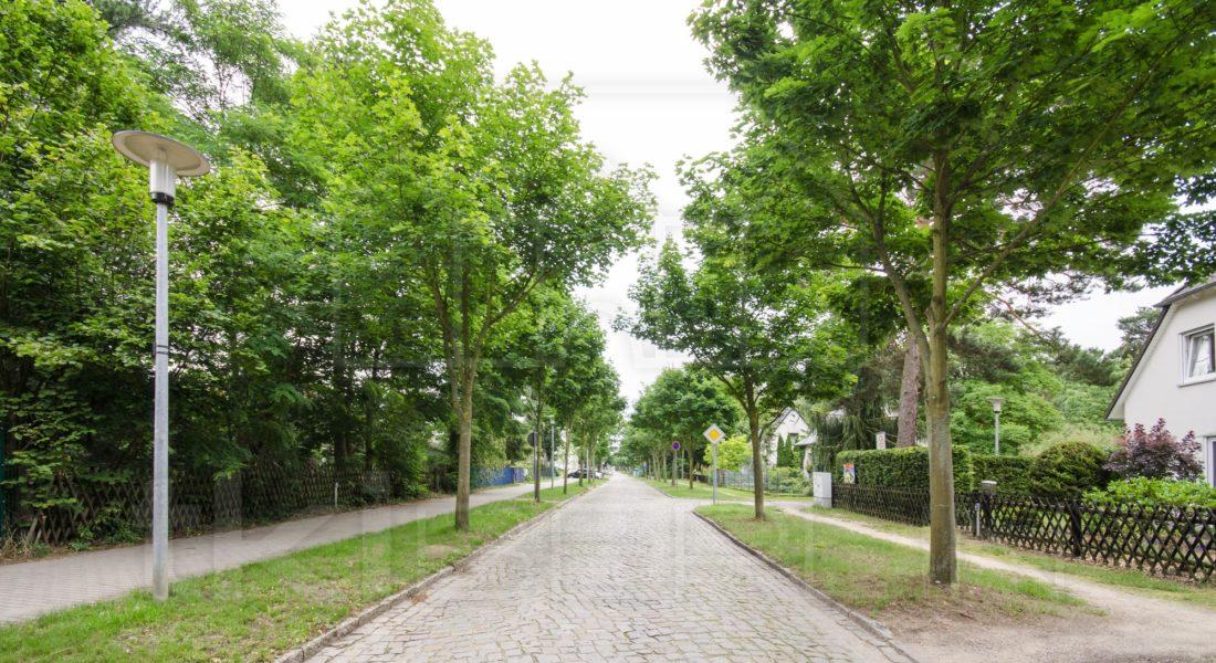 Grünes Grundstück in familienfreundlicher Lage Blankenfeldes 15827 Blankenfelde-Mahlow, Grundstück