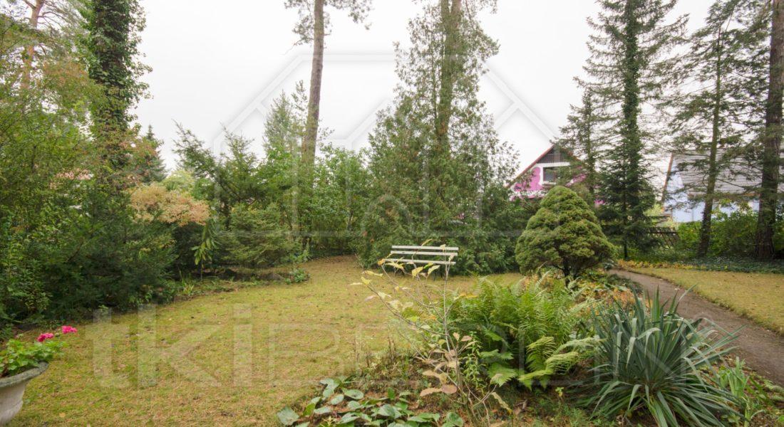 800 m² Bauland in grüner Lage Blankenfelde-Mahlows 15827 Blankenfelde-Mahlow, Grundstück